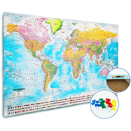 Push Pin Maps Std/Large