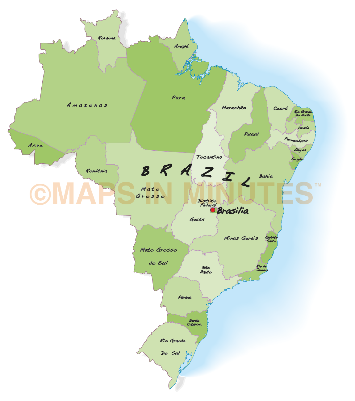 Vector Brazil Map Internal Divisions In Illustrator Format - Brazil map illustration
